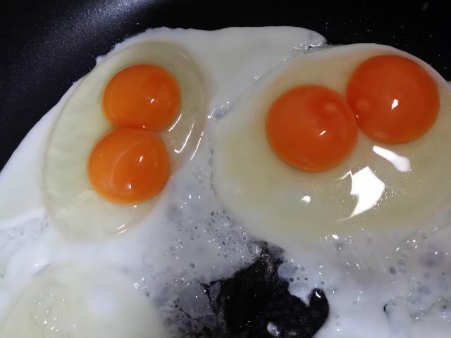 달걀 한판을 샀더니...